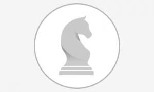 DSU grey-logo